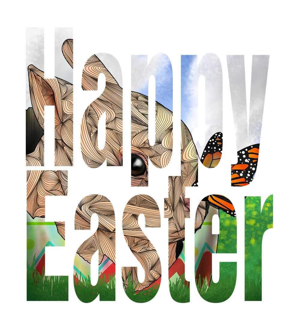 Happy Easter and Passover from BRGproductions! Like BRGproductions on facebook here>http://www.facebook.com/pages/BRGproductions/142460345768584