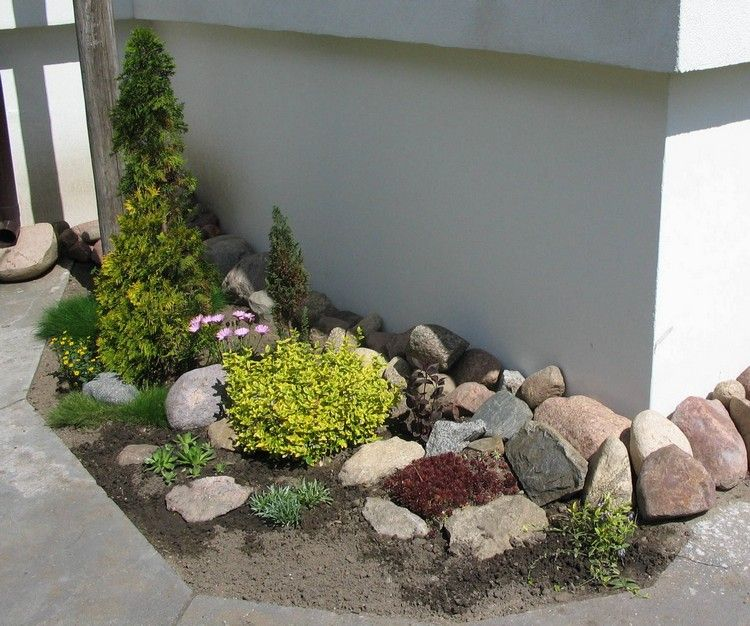 steingarten anlegen eonymus thuja bodendecker ziergraeser garten pinterest. Black Bedroom Furniture Sets. Home Design Ideas