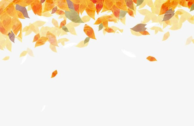 Beautiful Watercolor Autumn Leaves Fall Leaves Drawing Leaf