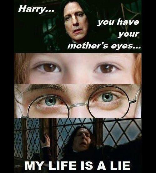 Via Humortrain Harry Potter Jokes Harry Potter Funny Harry Potter Puns