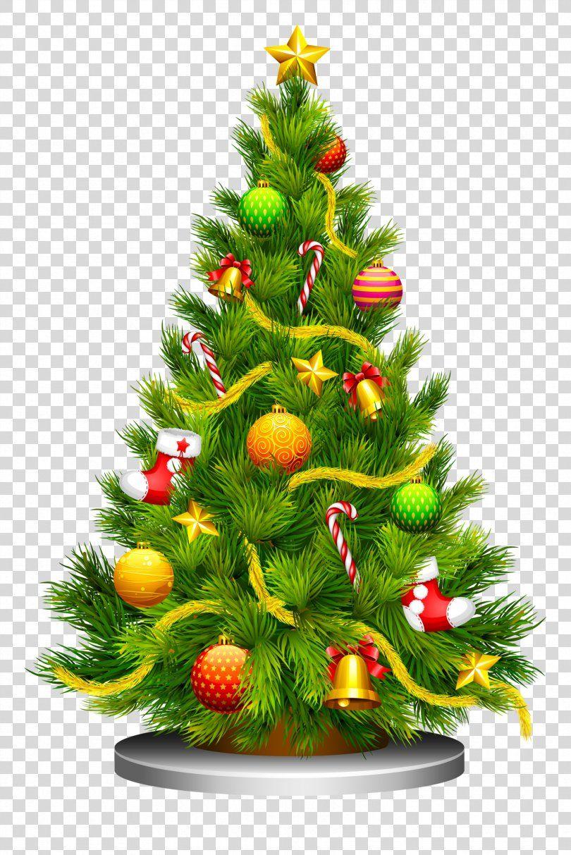 Christmas Tree Clip Art Christmas Tree Png Christmas Tree Christmas Christmas Decoratio Cartoon Christmas Tree Christmas Tree Clipart Green Christmas Tree