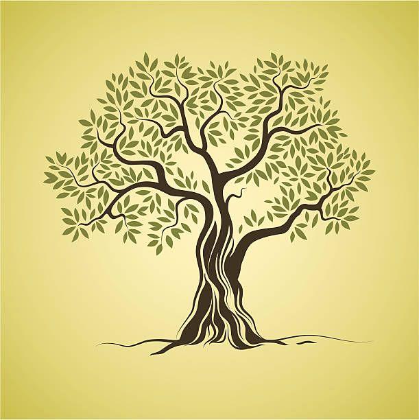 Olive tree vector art illustration   TATTOO   Pinterest   Vector art ...