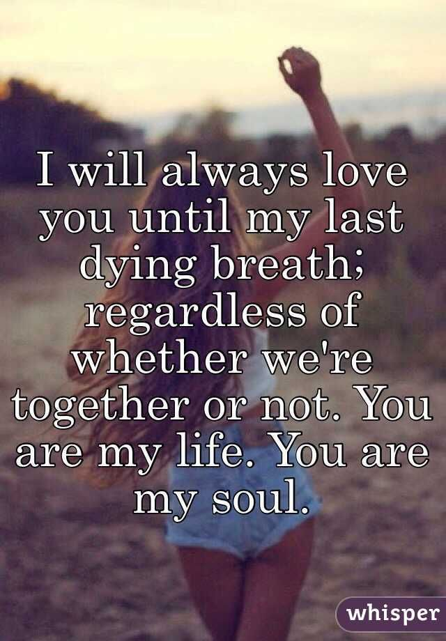 My Love My Life Quotes: Pin By Mac Rak On Quotes And Such