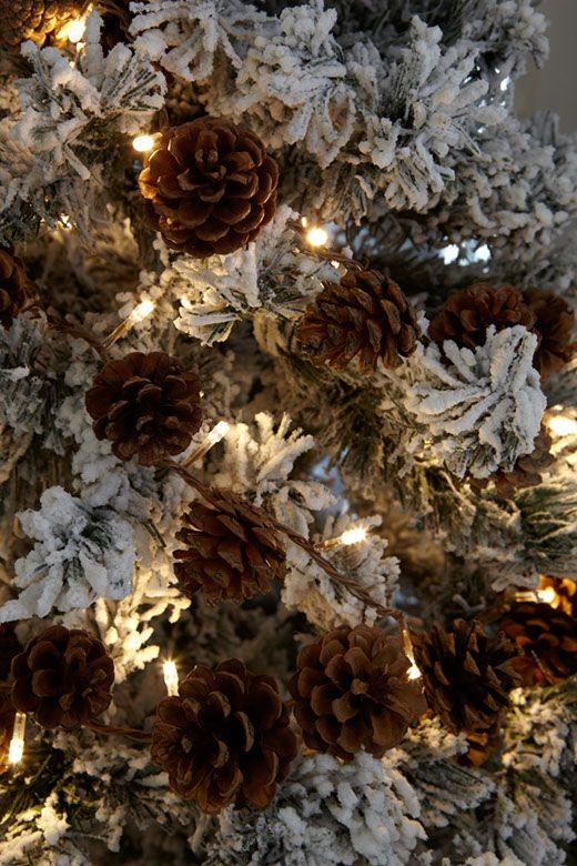 Forêt Enchantée Noël photographic ♡♡ Pinterest
