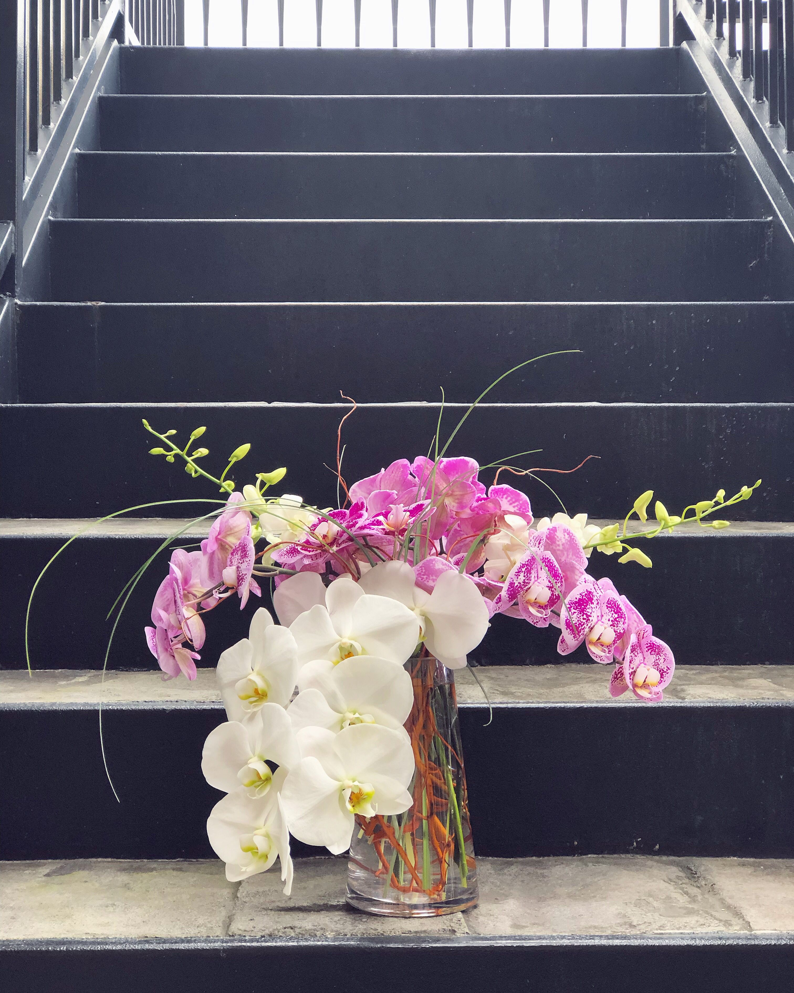 What Natural Beauty Flowers Flower Delivery Orchid Arrangements