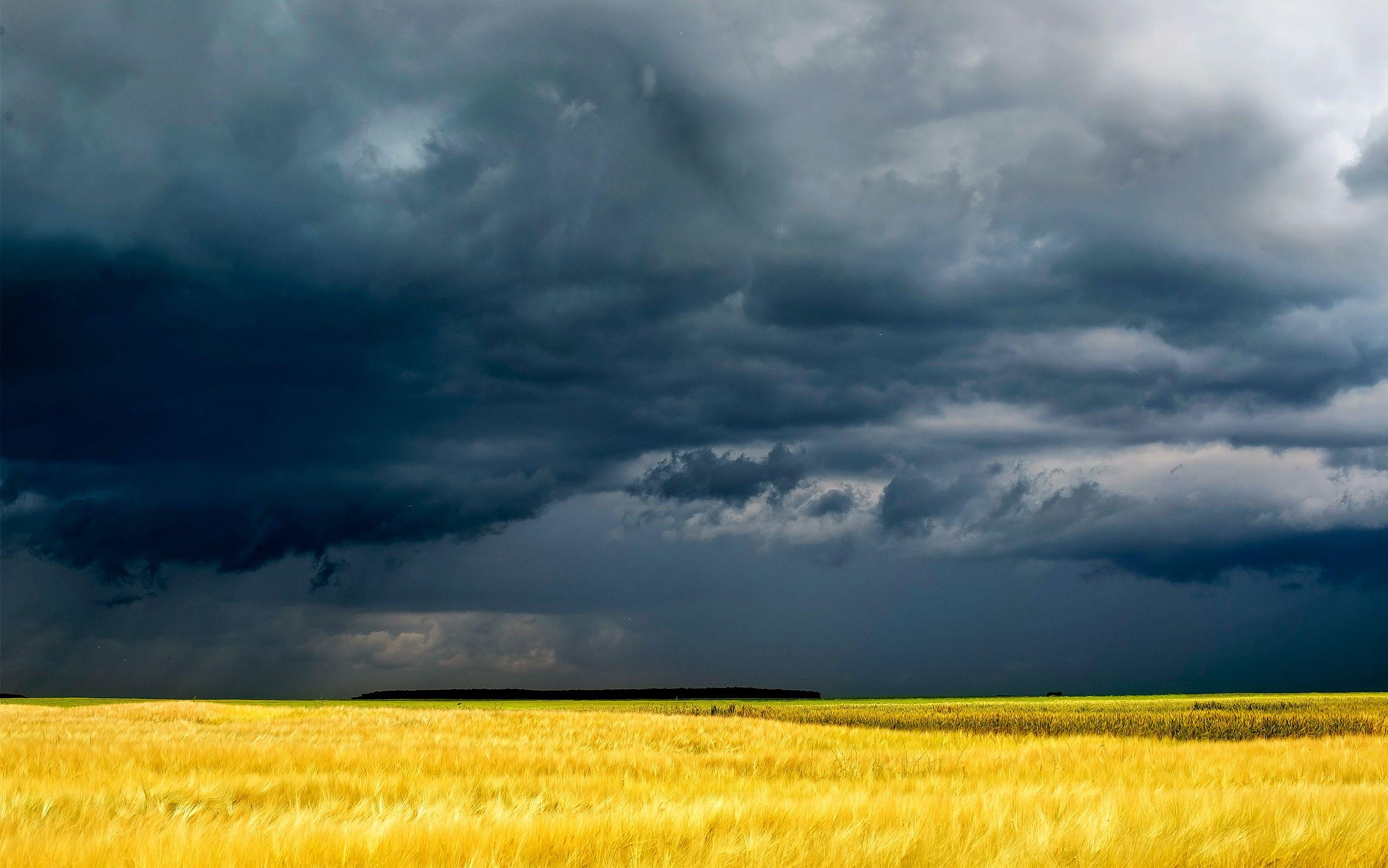 Bright Yellow And Dark Blue Idei Ozeleneniya Oblaka Mrachnye Fotografii