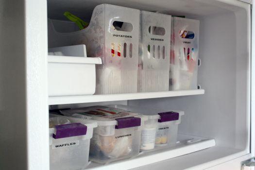 Bins in the freezer!