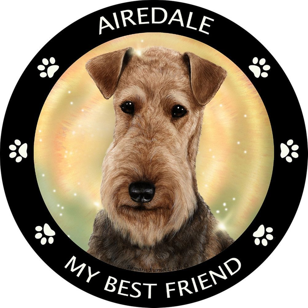 Airedale My Best Friend Magnet