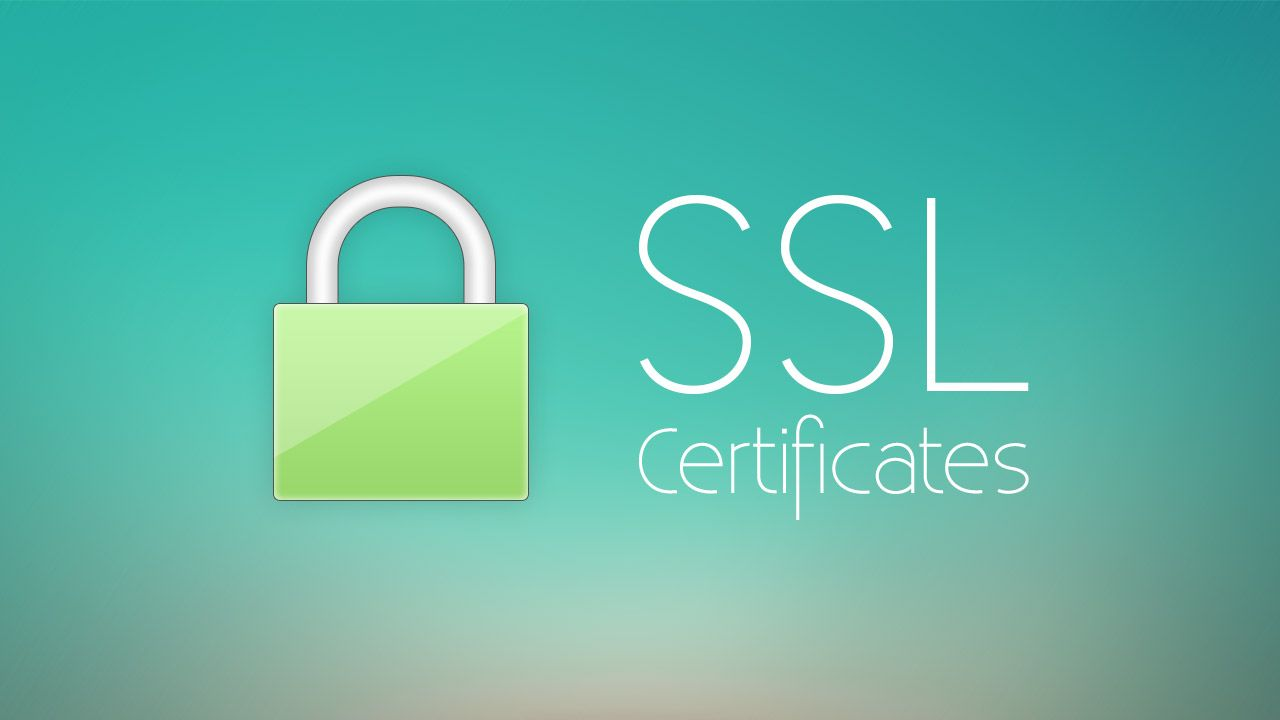 Wordpress Web Designing Company In Mira Road Ssl Certificate Certificate Authority Ssl