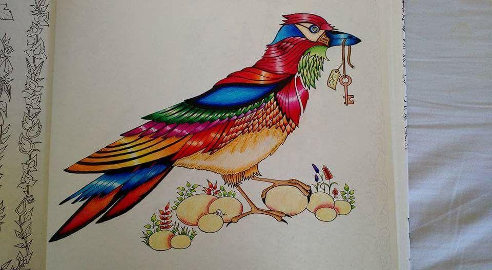Bird Enchanted Forest Passaro Floresta Encantada Johanna Basford Art Enchanted Forest Basford