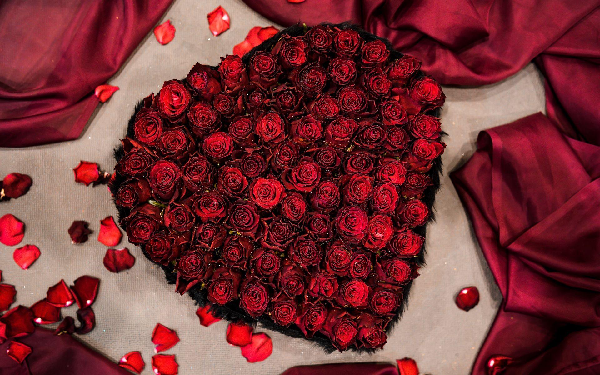 Love Rose Pic Hd Wallpaper Rose Pic Rose Pic Hd Love Rose