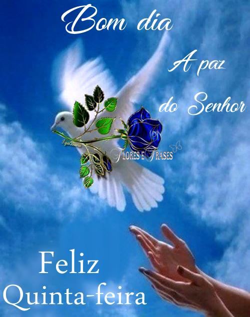 Bom Dia Feliz Quinta Feira Flores Frasesmensagens Para Whatsapp