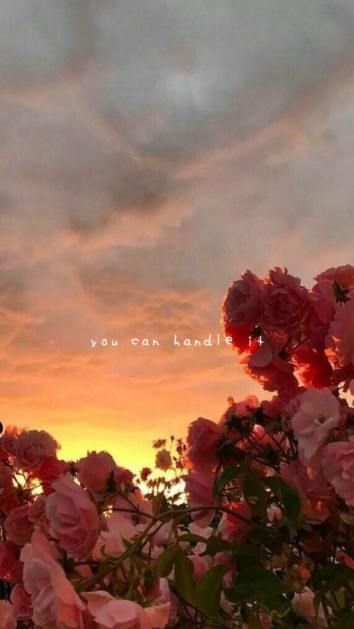 tumblr aesthetic flowers wallpaper  Flowers in 2019