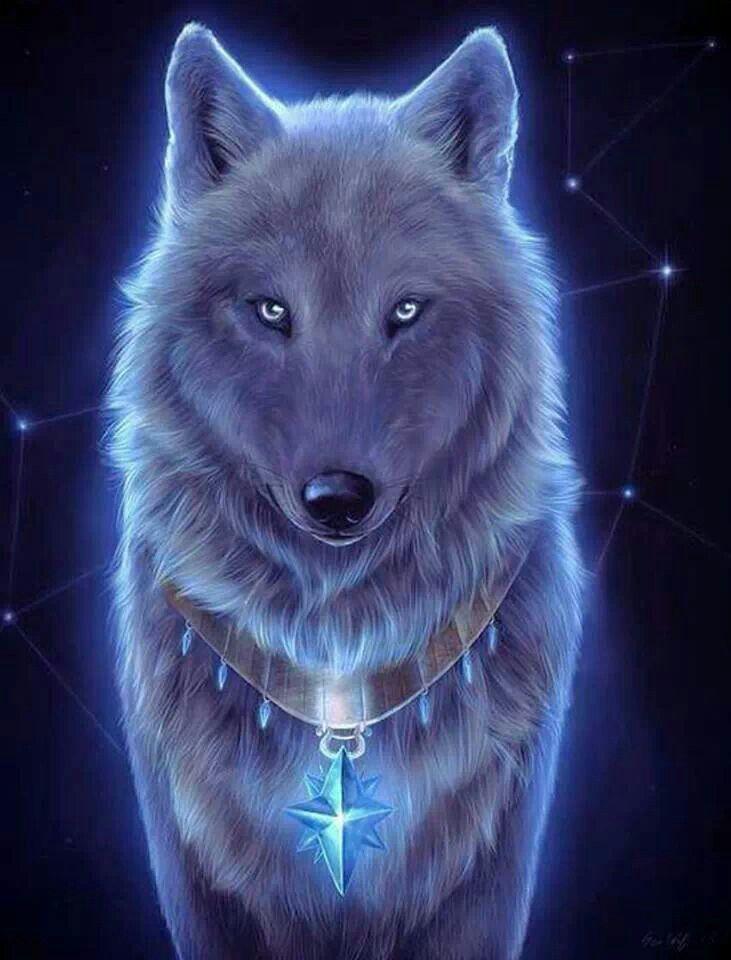 Spirit Animal Mystic Black Wolf Art Des Animaux Sauvages Dessin De Loups Loup Gris