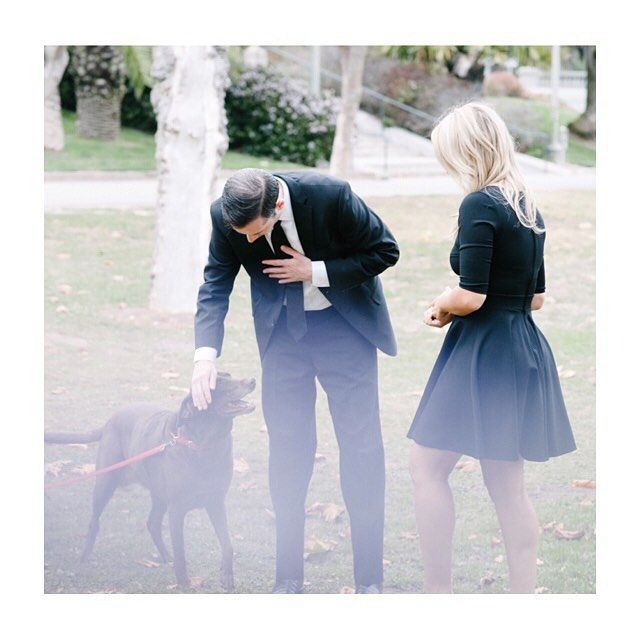 Classic suit and fit and flare, and pup. Love. #weddinginspiration #loveweddings #engagementphotos