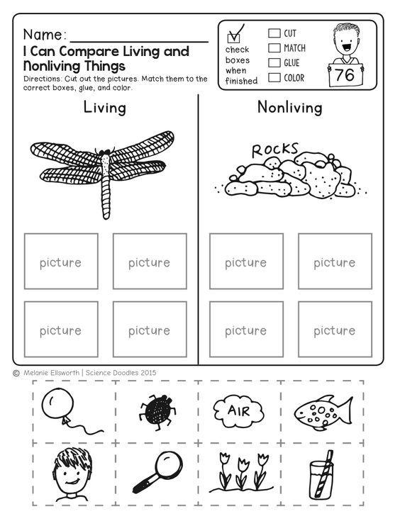 FREEBIE! NO-PREP Kindergarten Science Doodle Printables ...