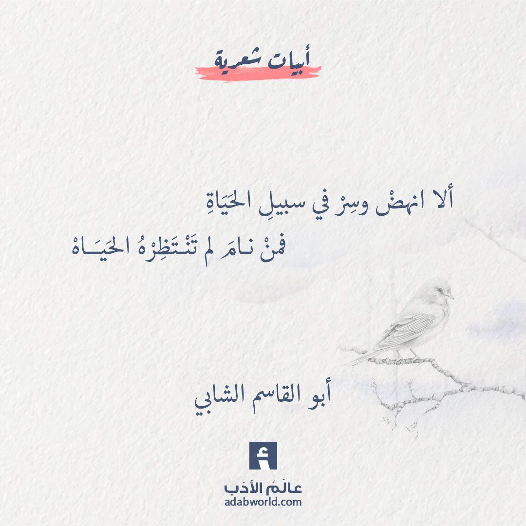 ألا انهض وسر في سبيل الحياة أبو القاسم الشابي عالم الأدب Words Quotes Holy Quotes Inspirational Quotes