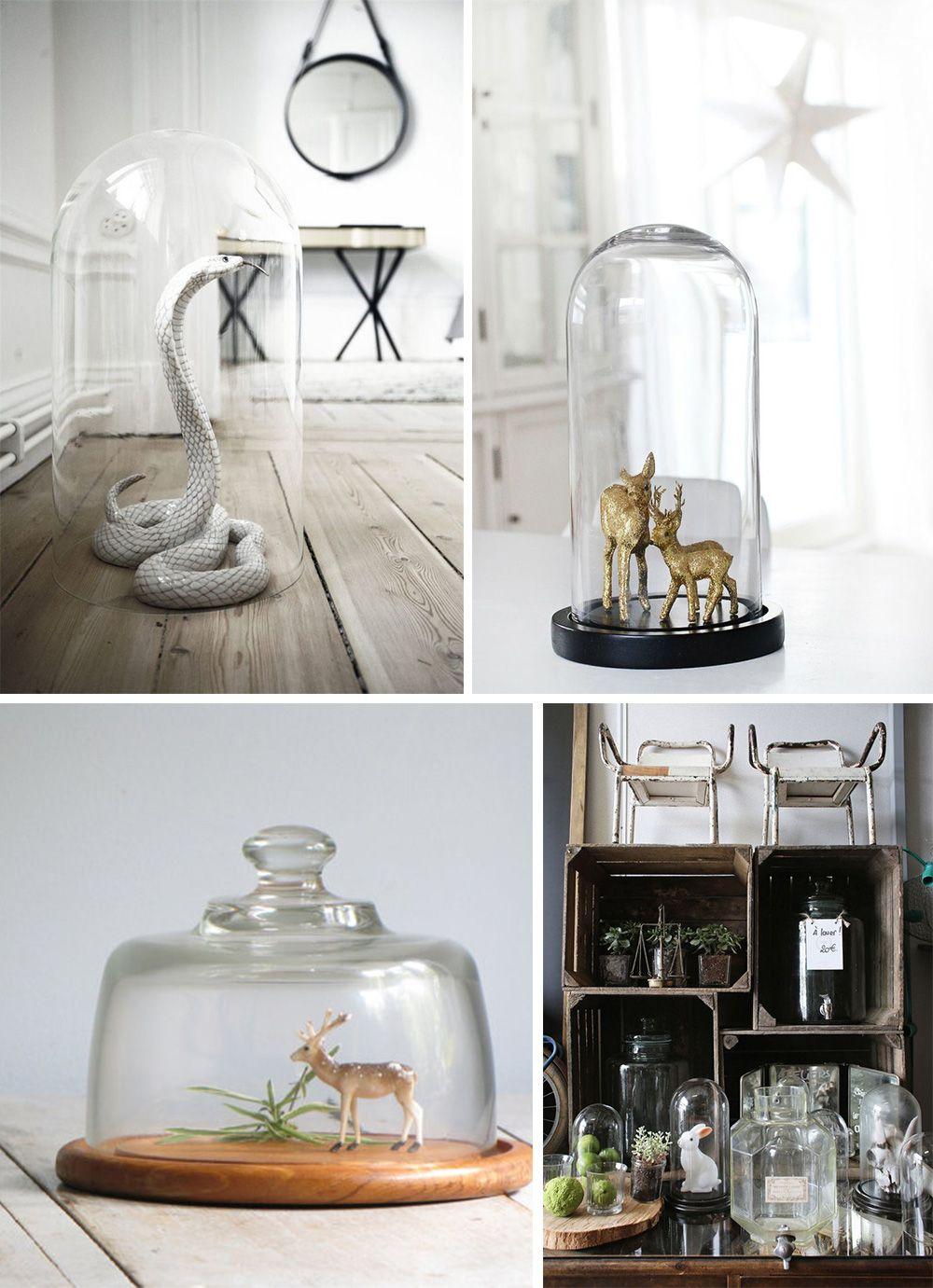 que mettre sous une cloche en verre elephant in the room d co aholic pinterest deco. Black Bedroom Furniture Sets. Home Design Ideas