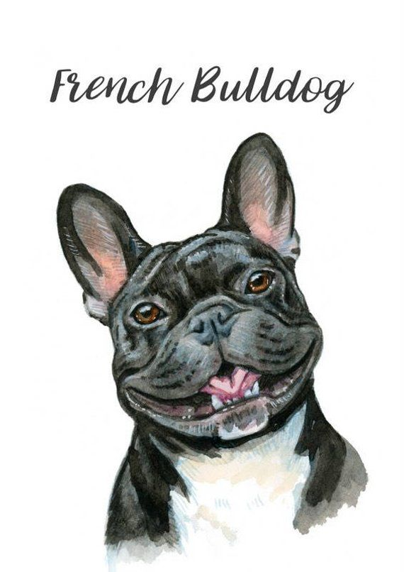 Custom Pet Portrait Watercolor Pet Illustration Sentimental Gifts Painting From Photo Dog Perros Bulldog Frances Bulldog Frances Dibujo Perros Bulldog