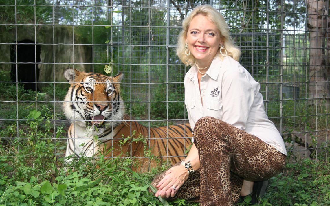 Justice For Carole Baskin The Inherent Sexism In Tiger King Femestella In 2020 Tiger Carole Cats And Kittens