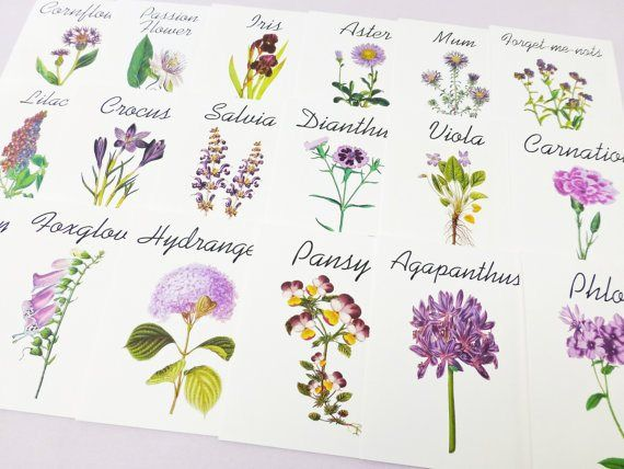 50 Best Table Name Ideas For Weddings Wedding Table Names