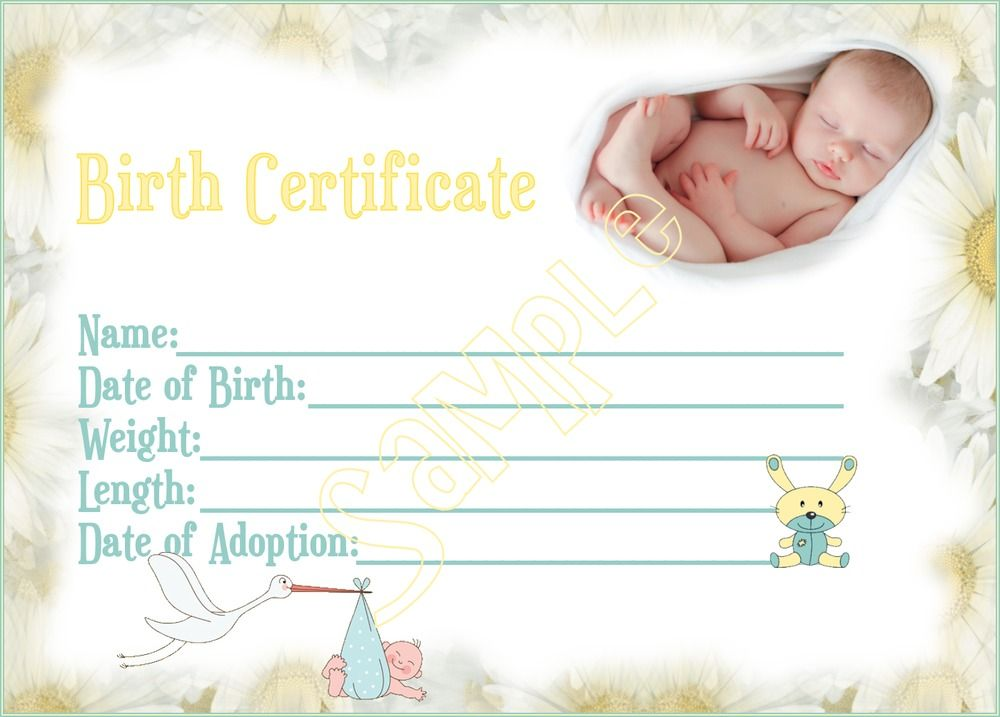 NEW ARRIVAL Reborn Baby Birth Certificate YOU PRINT baby stork - pictures of blank birth certificates
