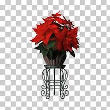 Flower Pot Top View Png Images Flower Pot Top View Clipart Free Download Flower Pots Free Clip Art Flowers