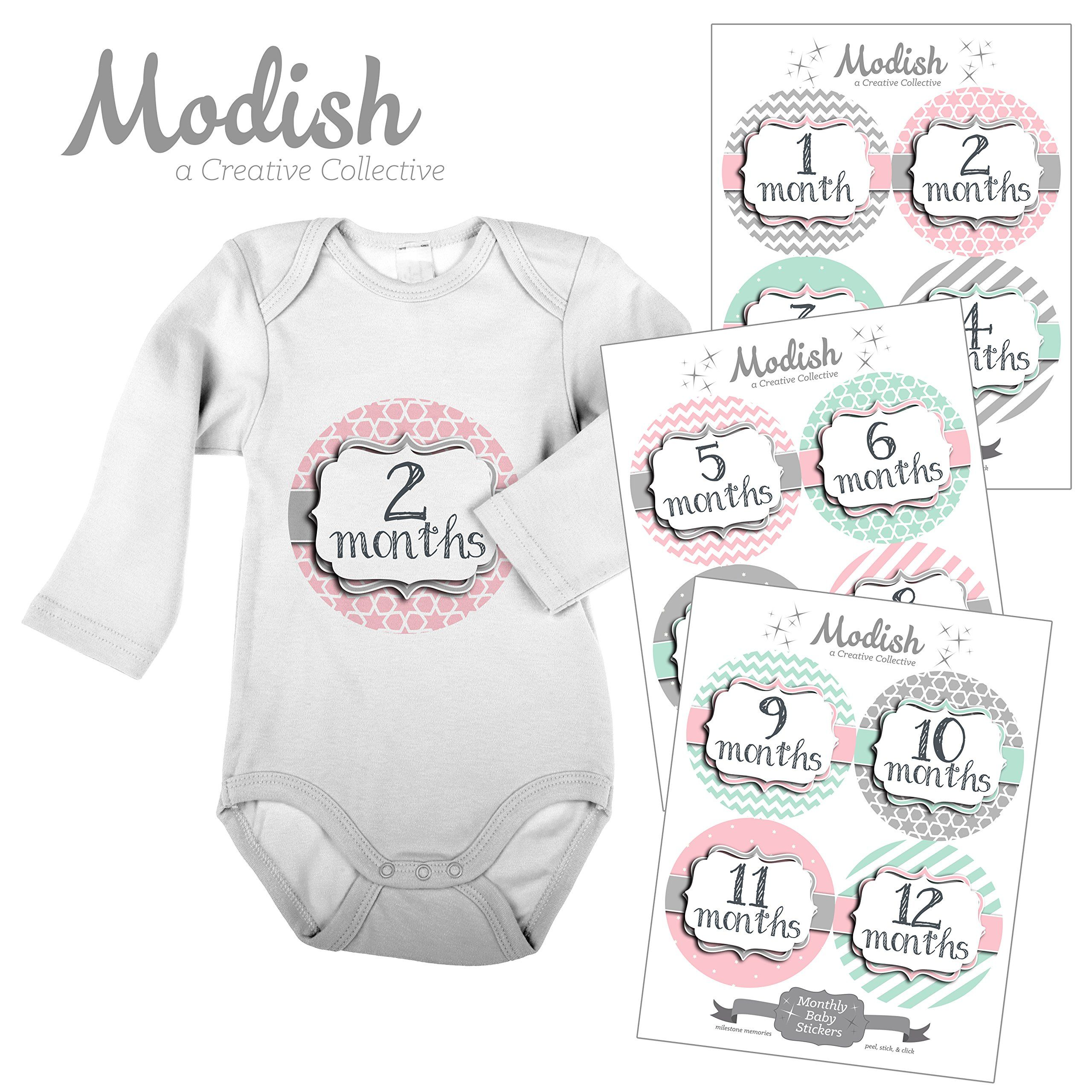 12 Monthly Baby Stickers Pink Gray & Mint Girl Baby Belly