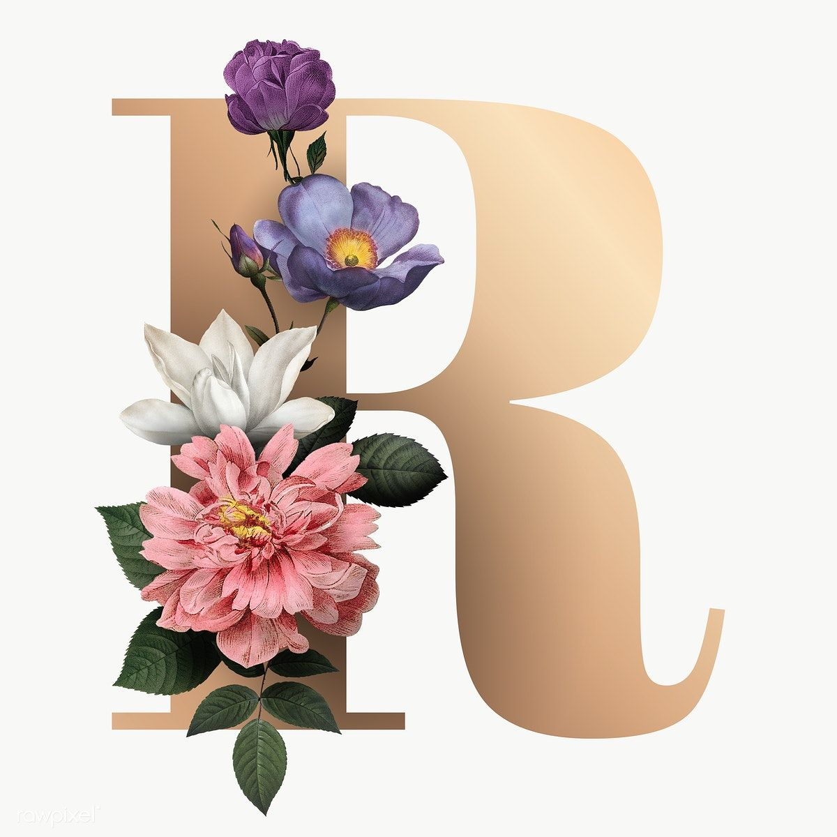 Download Free Png Of Classic And Elegant Floral Alphabet Font Letter R Transparent Png About Golden Le Fonts Alphabet Lettering Alphabet Fonts Lettering Fonts