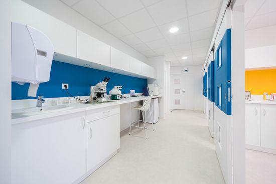 Album Clinique Design De Cabinet Dentaire Clinique Veterinaire Veterinaire