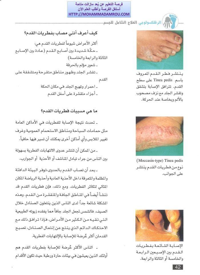 كتاب العلاج الشامل للجسم عبر تدليك اليدين والقدمين رفلكسولوجي Fruit Cantaloupe