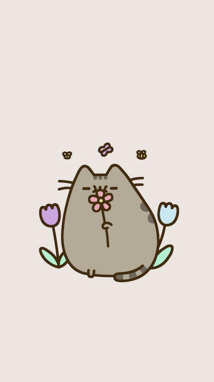 Pin by Snowy on Pusheen Pusheen cute, Pusheen cat, Cute