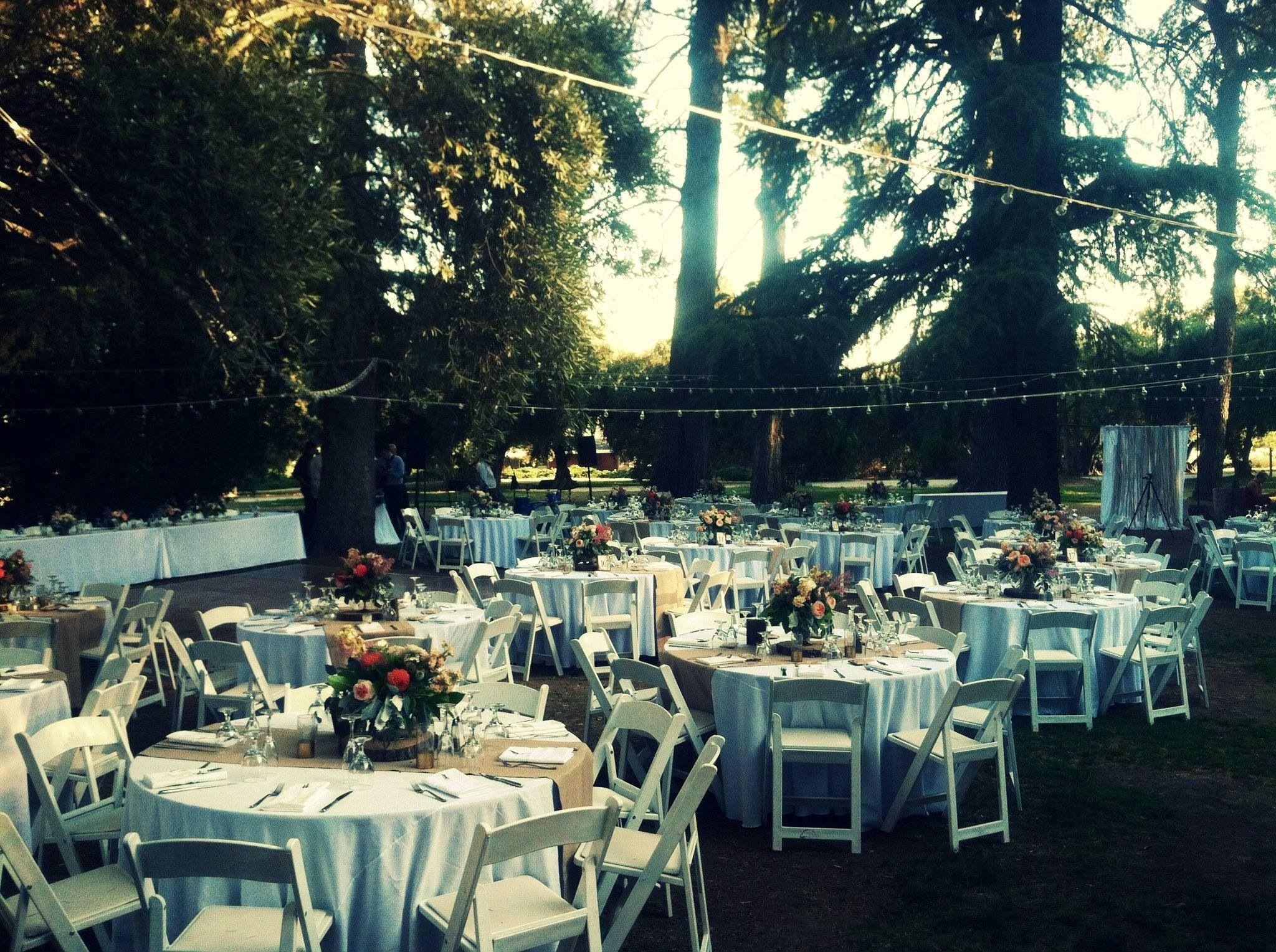 Outside garden wedding in blush tones