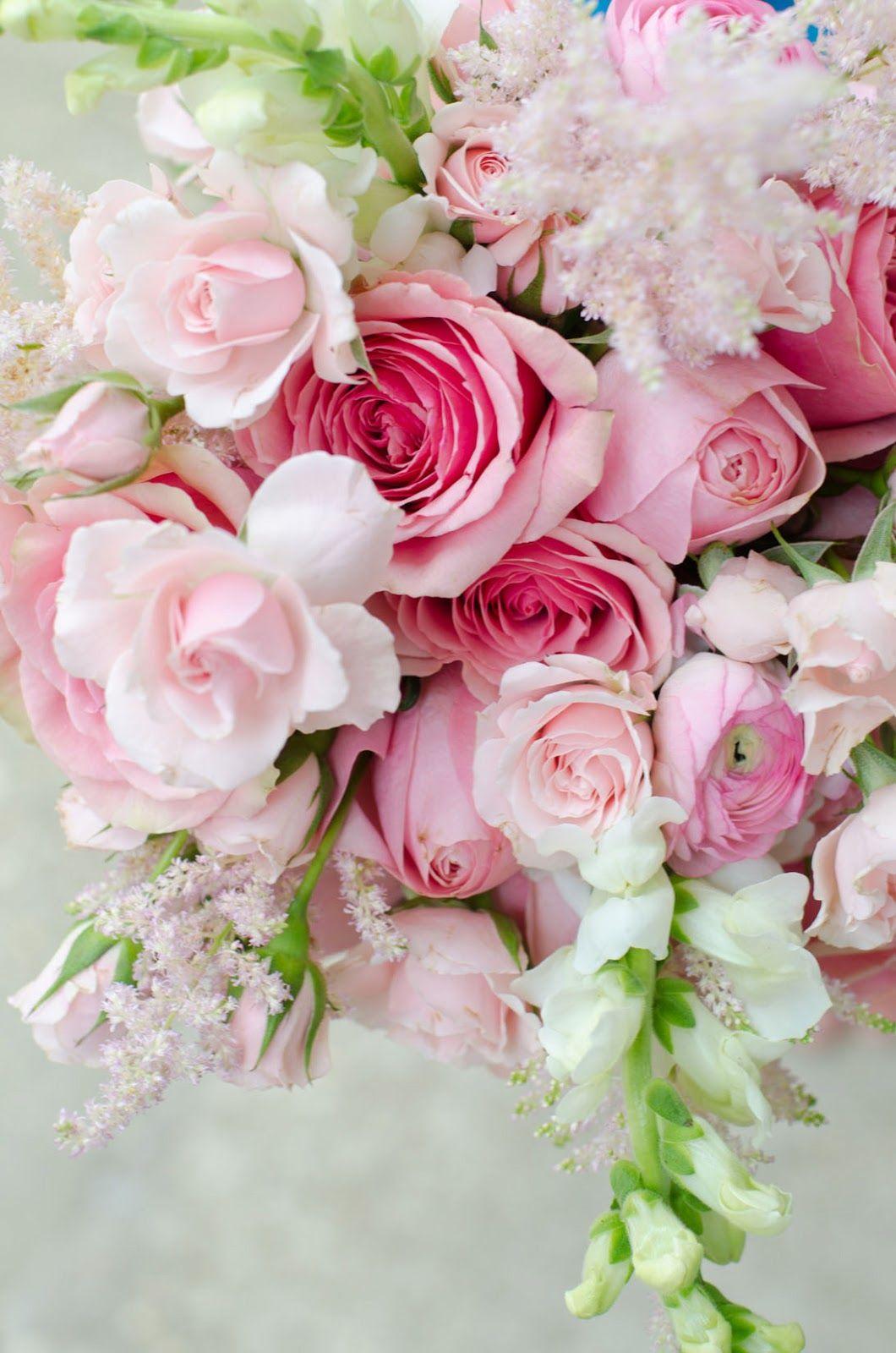 Top 46 beautiful pink flowers for your garden landscape designs top 46 beautiful pink flowers for your garden mightylinksfo