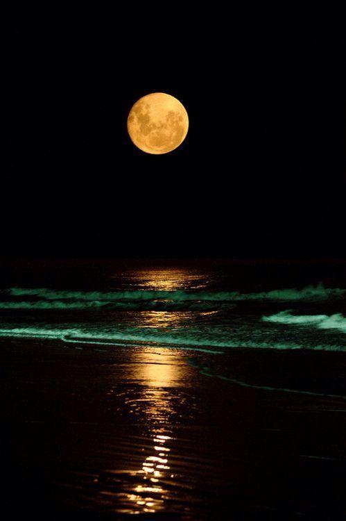 Una hermosa luna en una playa espléndida