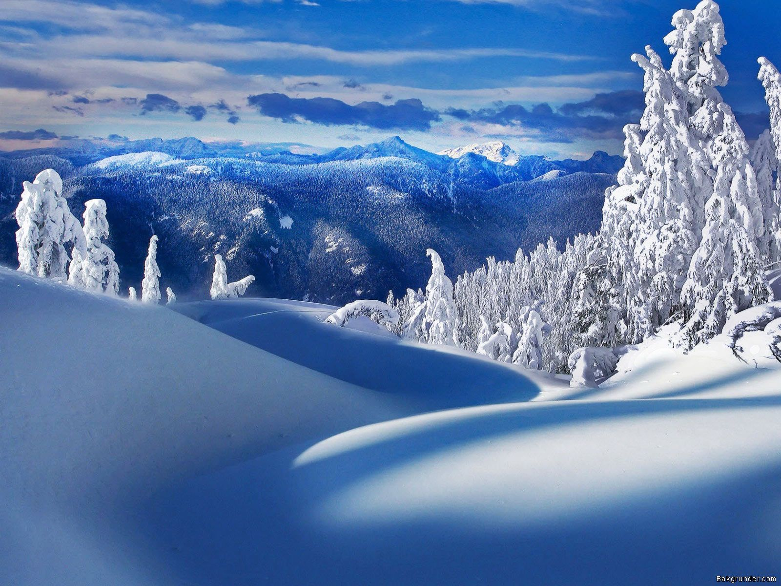 Winter Wonderland Wallpaper Backgrounds