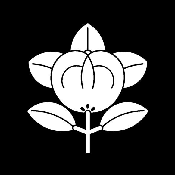 Cerimonia Do Cha - Tea Ceremony