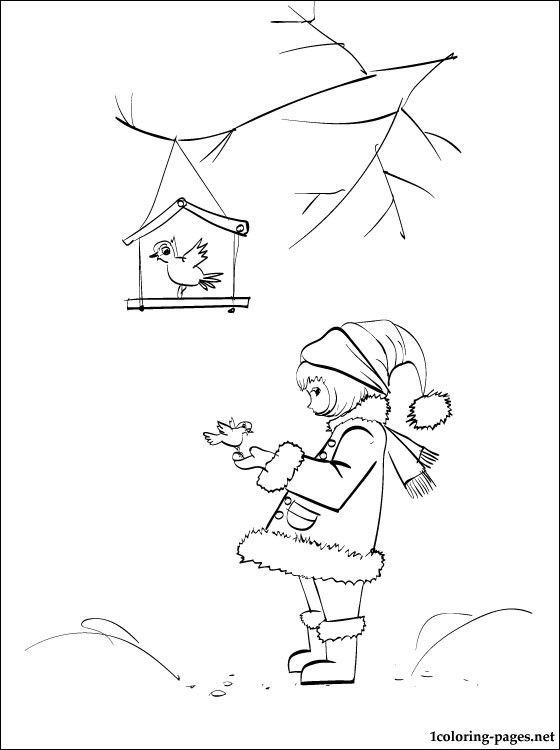 Winter Birds Coloring Page Pages Great Authors Bird Rhpinterestca: Coloring Pages Birds In Winter At Baymontmadison.com