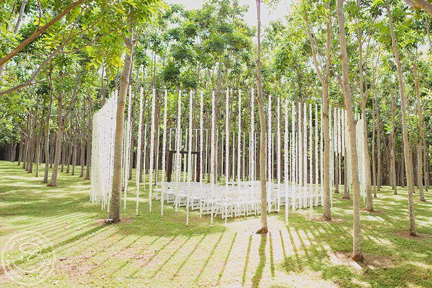 Na Aina Kai Botanical Gardens Kauai Wedding Venue Location. Magical Forest  Ceremony Site With Hanging