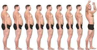 THE 3 WEEK DIET is a revolutionary new diet system designed to help you lose more weight