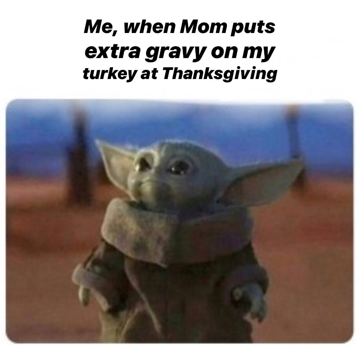 15 Thanksgiving Family Memes Because You Have To Laugh Funny Thanksgiving Memes Yoda Yoda Meme