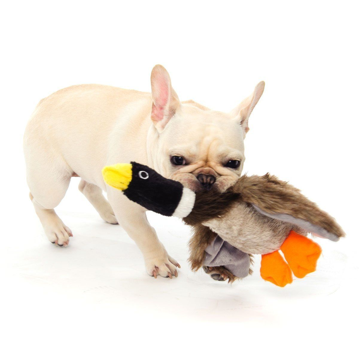 Dog toys images  Dogloveit Mallard Duck Squeaky Dog Toys for Small Dogs Plush Dog