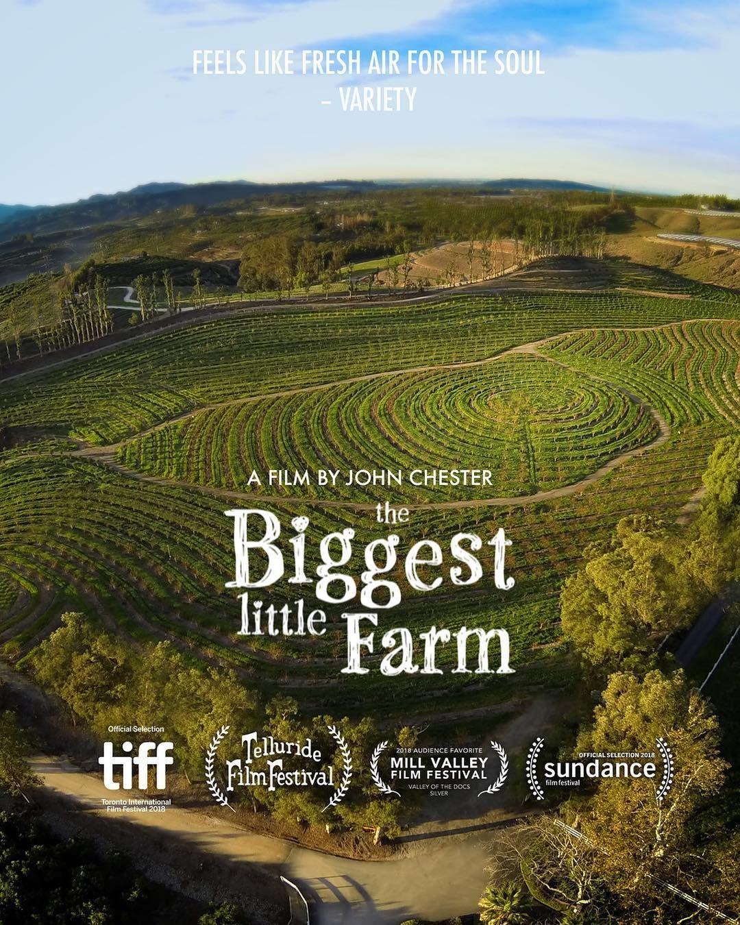 The Biggest Little Farm Big Little Good Movies Road Trip Usa