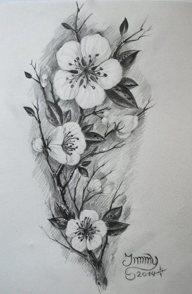Pin By Ujlluijlliiss Dookss Niilss On Drawing Blossom Tattoo