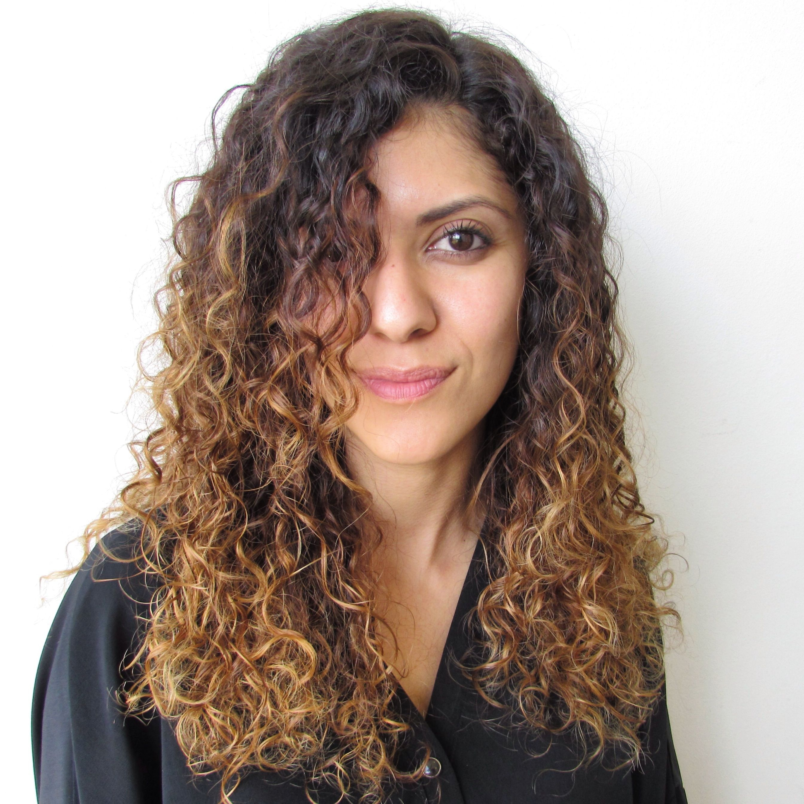 2017 Curly Hair With Highlights Picsgroup Light Brown