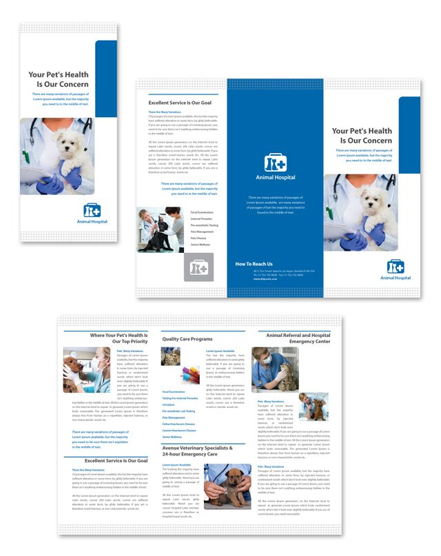 Veterinarians Tri Fold Brochure Template HttpWwwDlayoutsCom