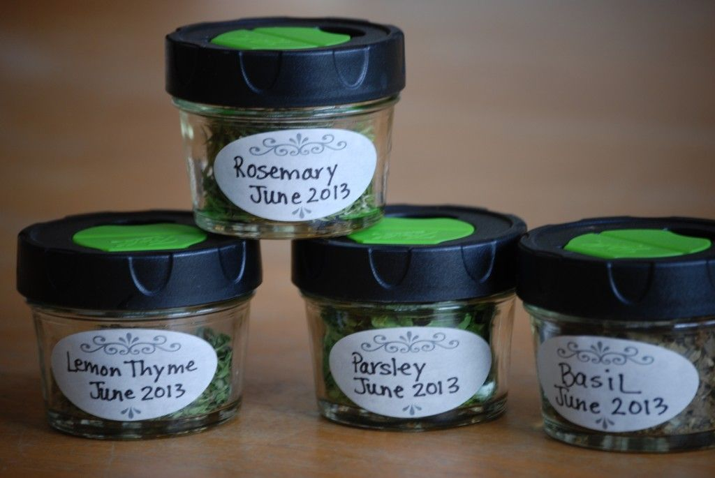 Drying Herbs for Beginners - Home Ready Home