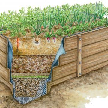 15 Tipps Rund Um Den Kompost Hochbeet Hochbeet Anlegen Hochbeet Holz