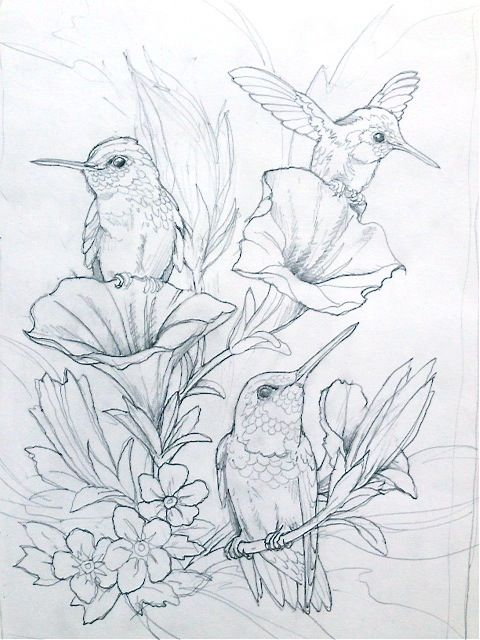 humming bird flower Coloring pages colouring adult detailed advanced ...