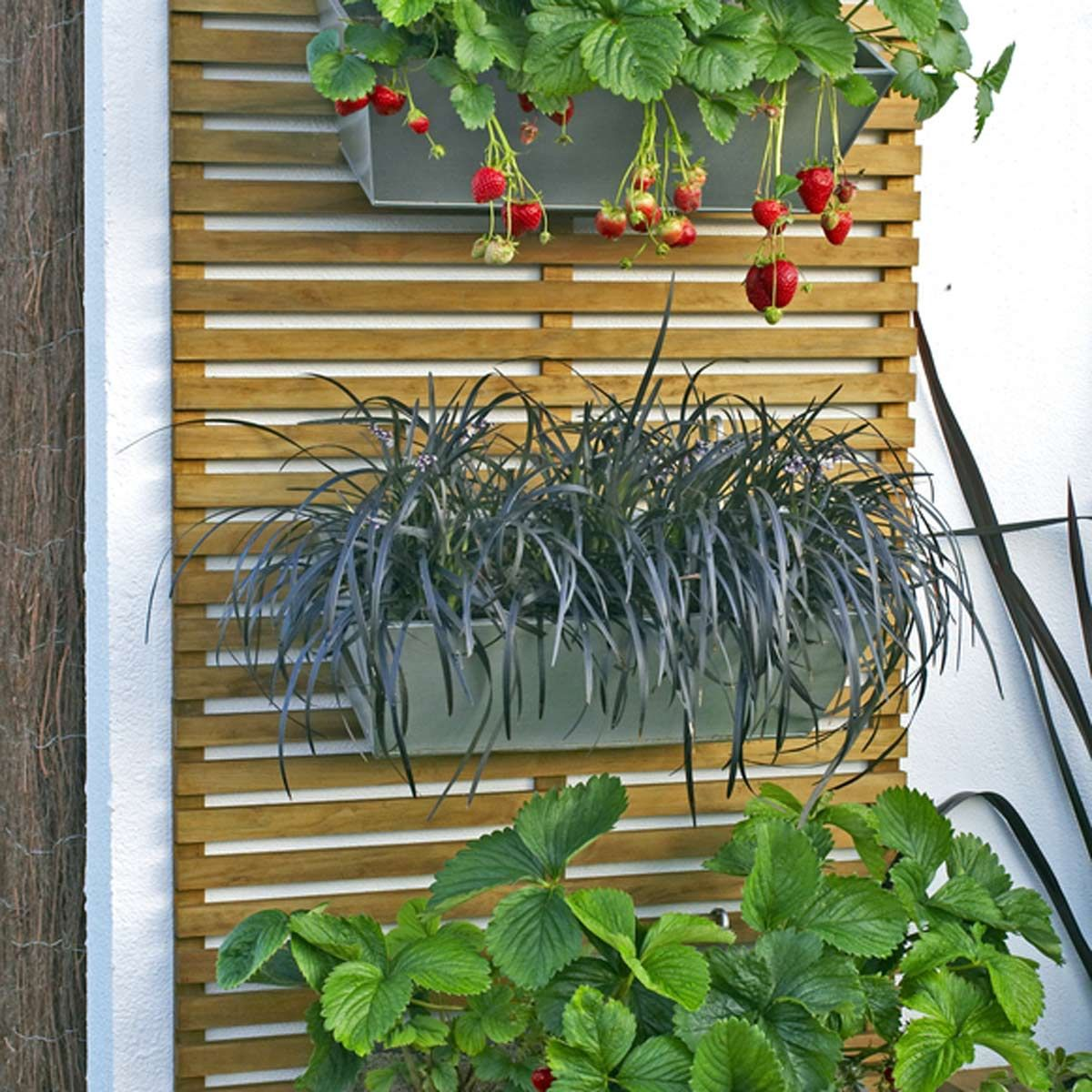 Patio Garden Ideas For Every Space: 14 Smart Small Yard Landscaping Ideas